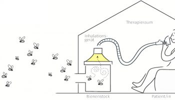 ApiPro Natura Beecura Skizze-Bienenstockluft